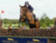 Competing at the Young Event Horse Series