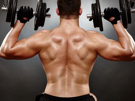 Como se desencadeia o Processo de Ganho de Massa Muscular no Corpo?