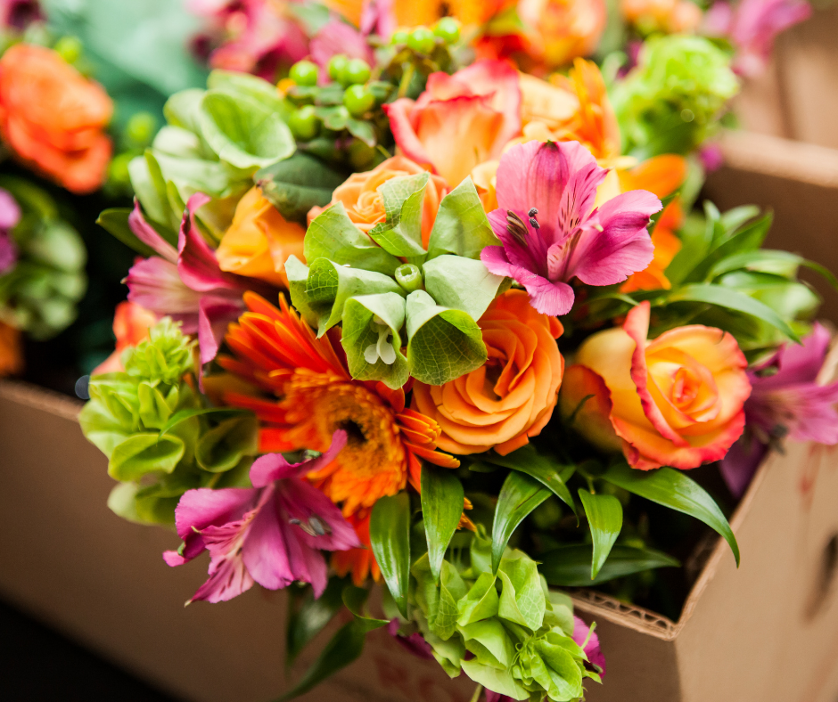 Cut Flowers: Colourful, Classy, and Carbon-Intensive...?