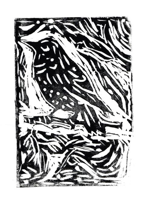 Vertical-Esopo-3.jpg