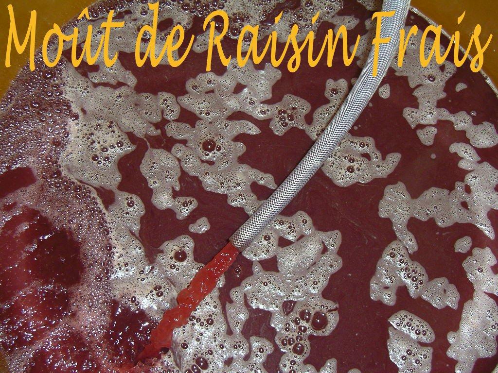 Moût de Raisin