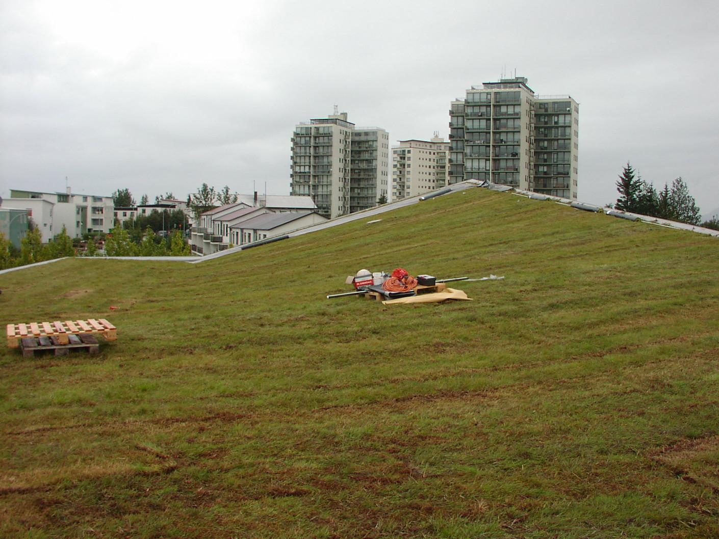 BubbleDeck_Green_Roof.JPG