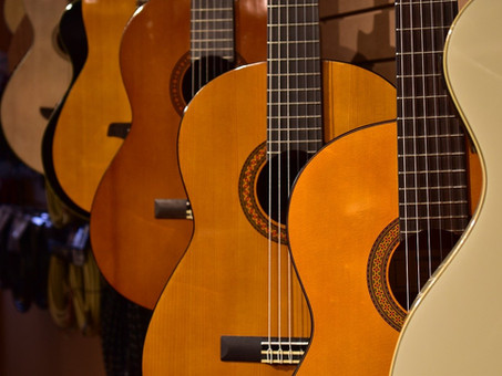 Was für Arten von Gitarren gibt es?