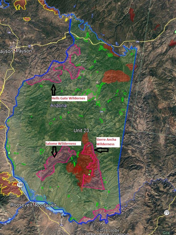Wilderness elk hunt unit 23 arizona