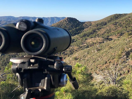 Scouting Arizona Public Land - Part One