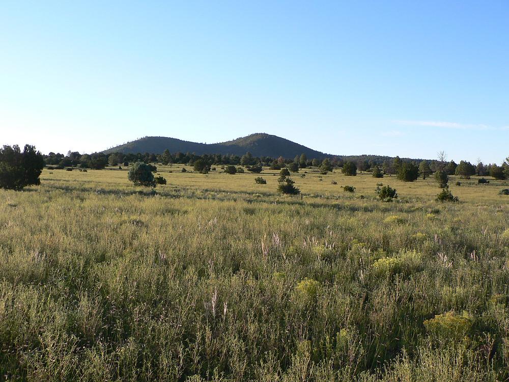 Unit 7 west elk arizona