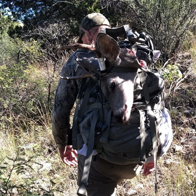 coues deer general hunt unit 33 arizona