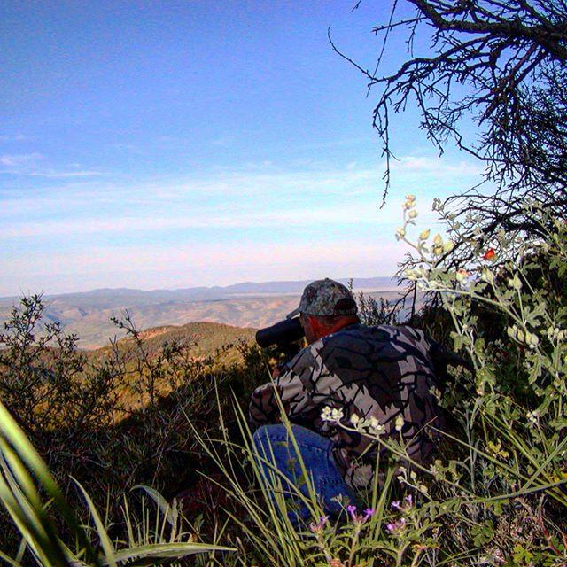 Unit 27 arizona bear hunting