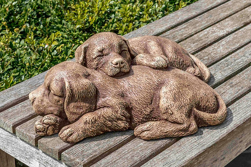 Nap Time Puppies- Concrete