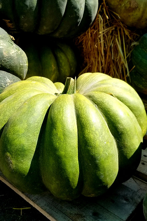 Ornamental Produce Large