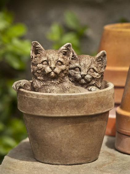 Sprouts Kittens Grey - Concrete