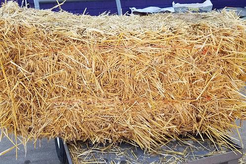 Straw Bale- Large