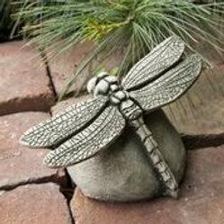 Dragonfly SM -Concrete