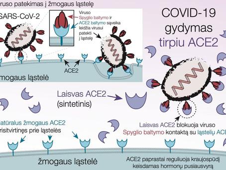 Nauja COVID-19 gydymo perspektyva