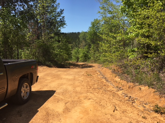 alabama land for sale (10)