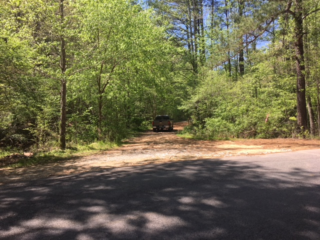 alabama land for sale (6)