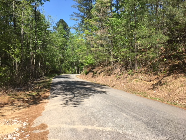 alabama land for sale (5)