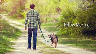 follow me cue thumbnail.jpg