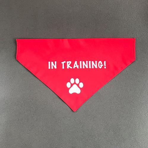 'In Training!' Bandana
