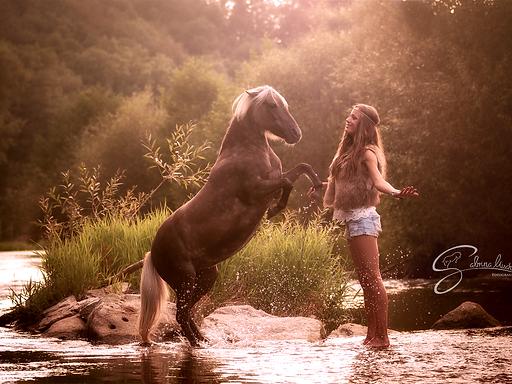 Workshop Pferdefotogafie