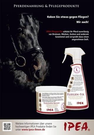 Titelbild Firma IPEA