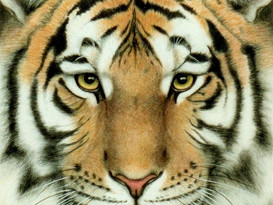 bravely taming the tiger called mind
