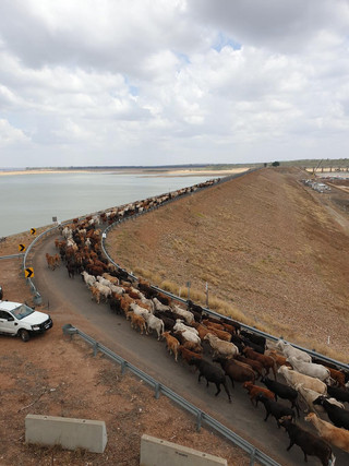 Water Allocations Drying Up...
