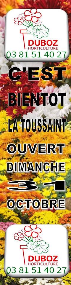 Duboz Toussaint.jpg