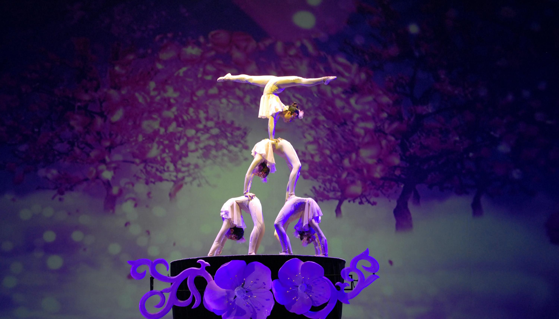 """Балетно-акробатическое шоу """"Щелкунчик"""""""