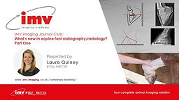 IMV imaging Journal Club 'What's new in equine foot radiography/radiology? Part One'