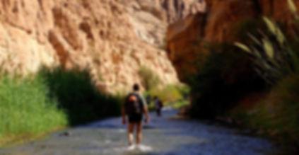 wadi-mujib-jordan tour