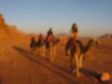 Jordan tour, Petra,seq, Nabataean Arabs,  icon of the rose red ,home,wadi rum