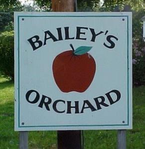 52+. Bags of Cortland Apples