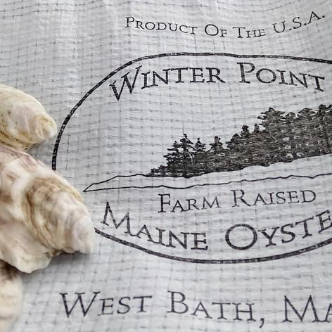 34. 2 Dozen Fresh Oysters