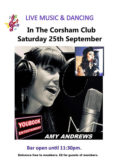 Amy Andrews poster.jpg