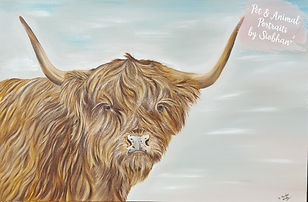 Highland cow painting.jpg