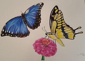 Butterflies painting.jpg