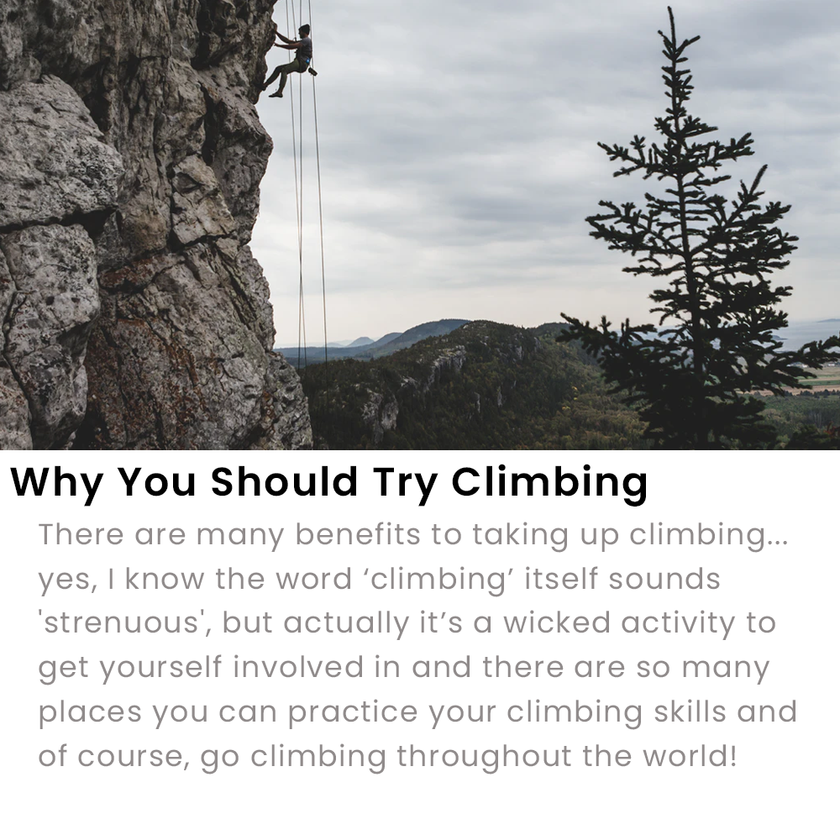 Why You Should Try Climbing