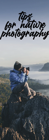Tips For Nature Photography