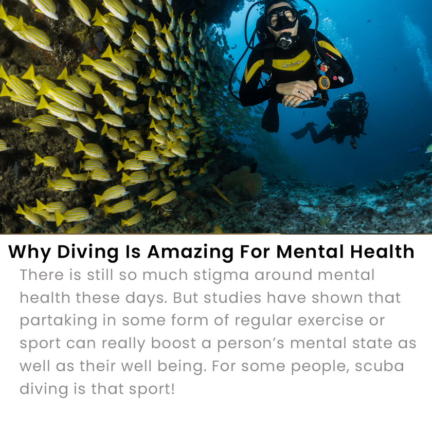 Diving And Mental Health