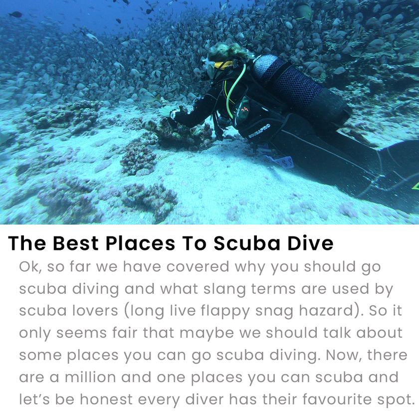 The Best Places To Scuba Dive