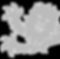 lion light grey x (2).png