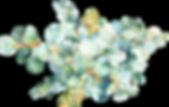 EucalyptusWreaths&Arrangements_07.png