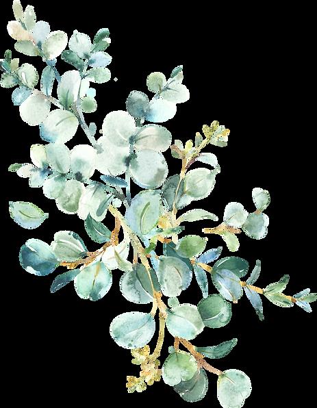 EucalyptusWreaths&Arrangements_06.png