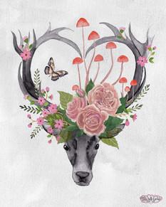 Deer_flower_head.jpg