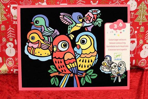 Coloriage velours Bébé Oiseaux