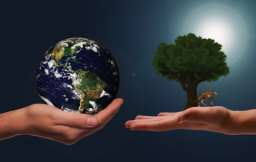 One hand holding the earth, another hand holding a tree and a deer. The environment is in our hands. Ban plastic.
