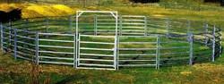 cattle-yard web