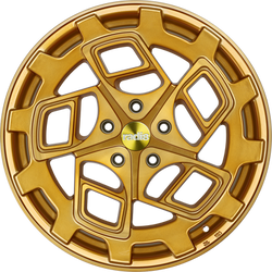 r8cm9 Gold Brushed.