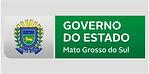 GOV MS.jpg